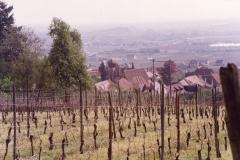 1992_35