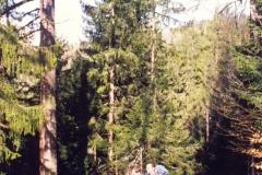 1995_19