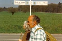 1996_31