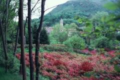 Pellegrinaggio Varallo 2000